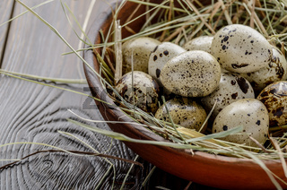 Fresh organic quail eggs in clay plate on wooden rustic kitchen table. Space for text