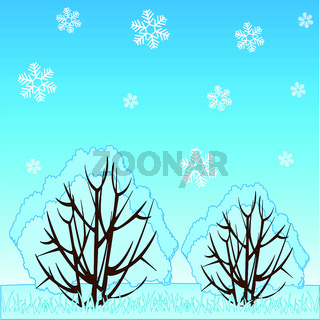 Winter landscape of the nature and falling snowflake