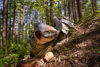 A Rusty and Classic Vehicle in the Forest