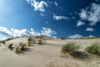 dunes with marram gras