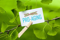 "The Word ""Pro-Aging"" in a Ginkgo Tree"