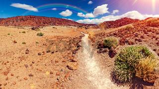 Lunar landscape in Tenerife national park.
