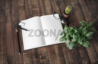Book, stationery, plants