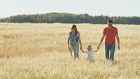 Young parents go with their son on a wheat field in the evening.