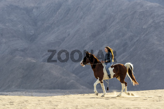 A Lovely Brunette Model Walks Her Horse Through The Desert On A Summers Day