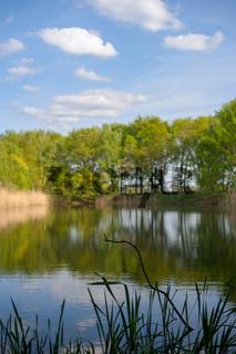 Haarteich im Naturschutzgebiet Boberger Niederung in Hamburg, Deutschland.