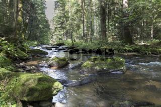 Osterbach im Bayer. Wald