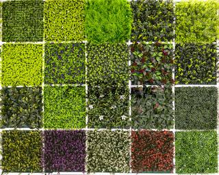 Different samples of fake vegetation