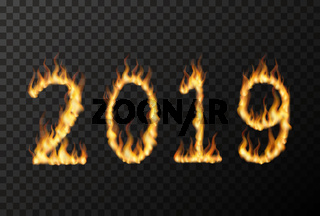 2019 number made from bright fire flames on transparent
